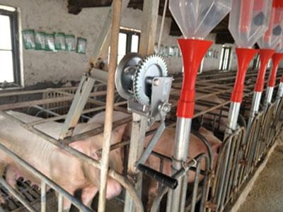 河南信阳猪场料线安装实例