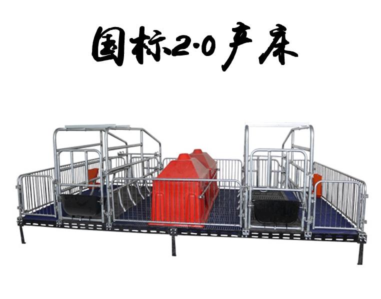 国标2.0双体母猪产床