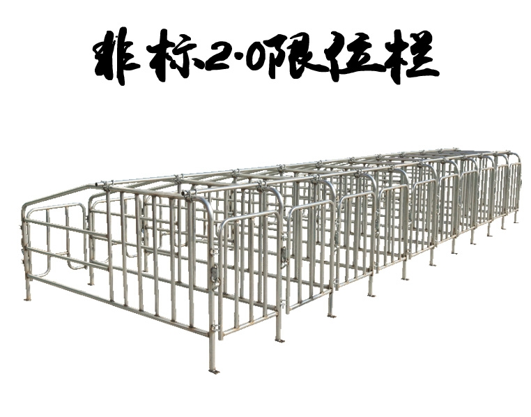 非标2.0母猪限位栏
